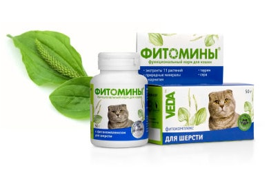 Phytominy for cats