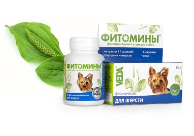 Phytominy for dogs