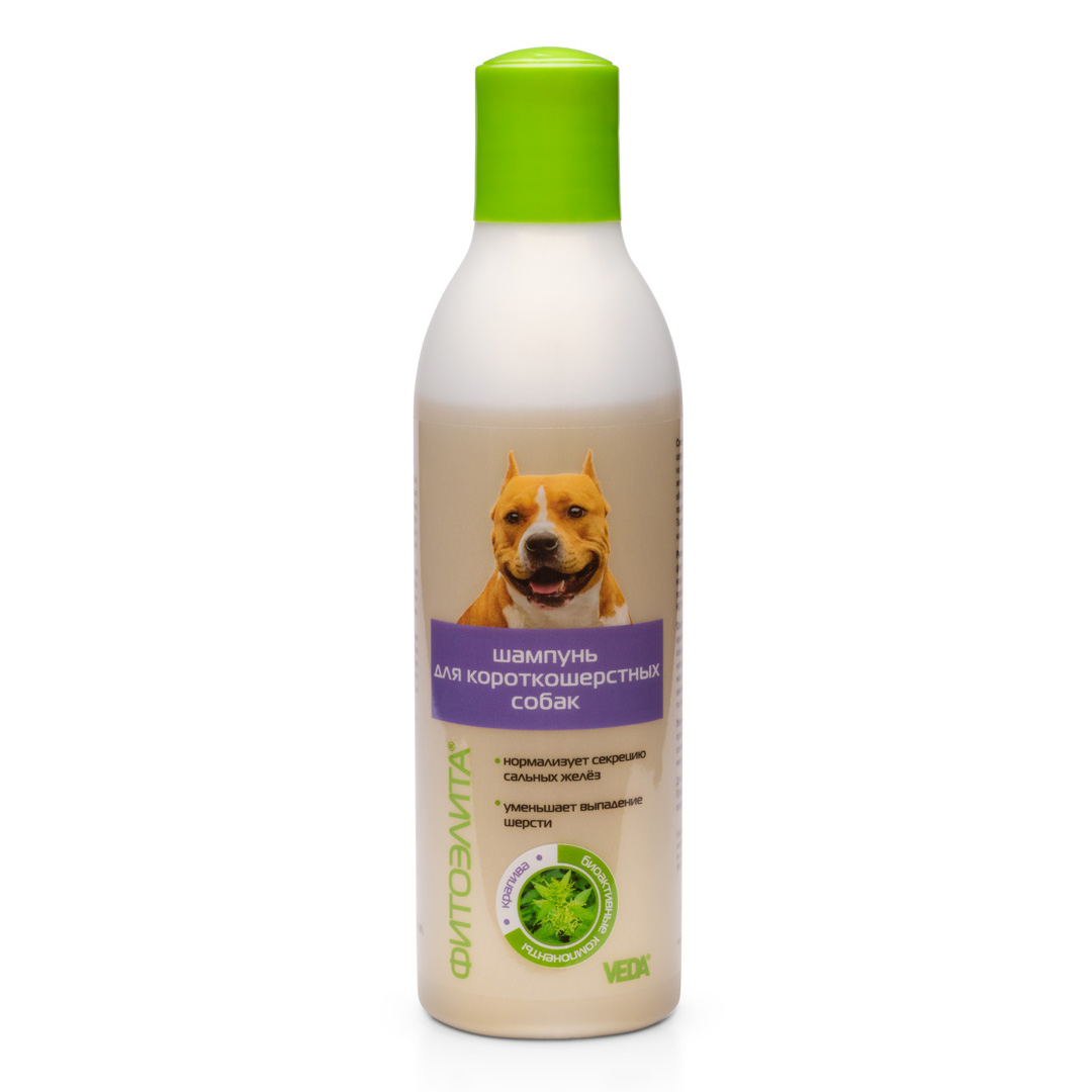 Shampoo-short-haired-dogs